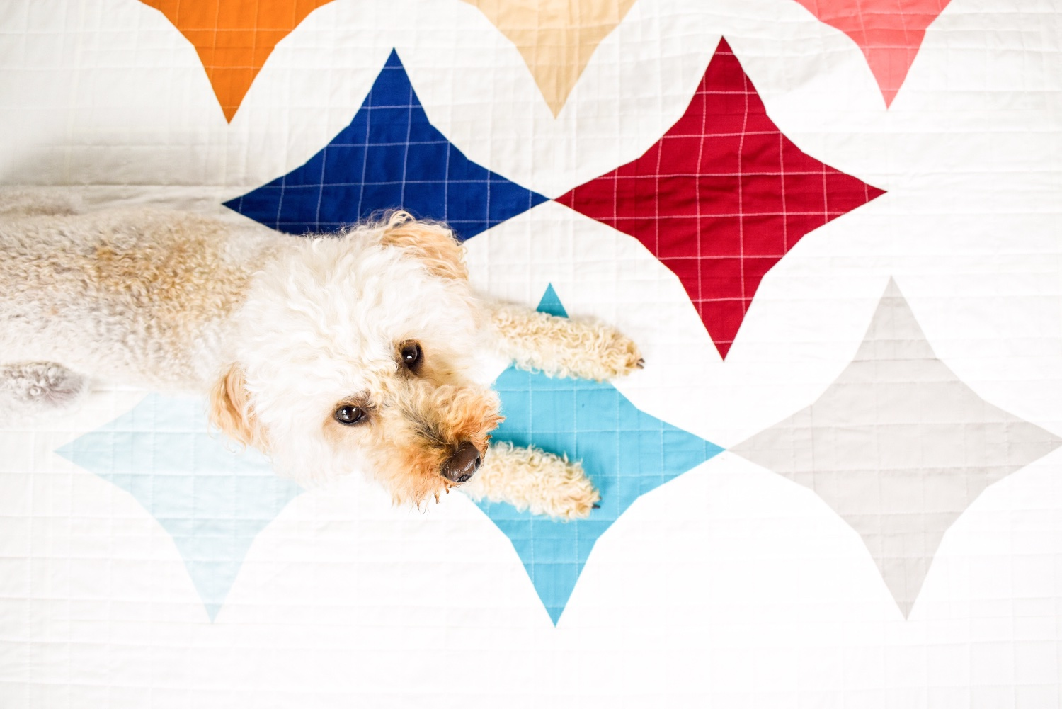 Art Gallery Fabrics Zesty | A Finished Quilt