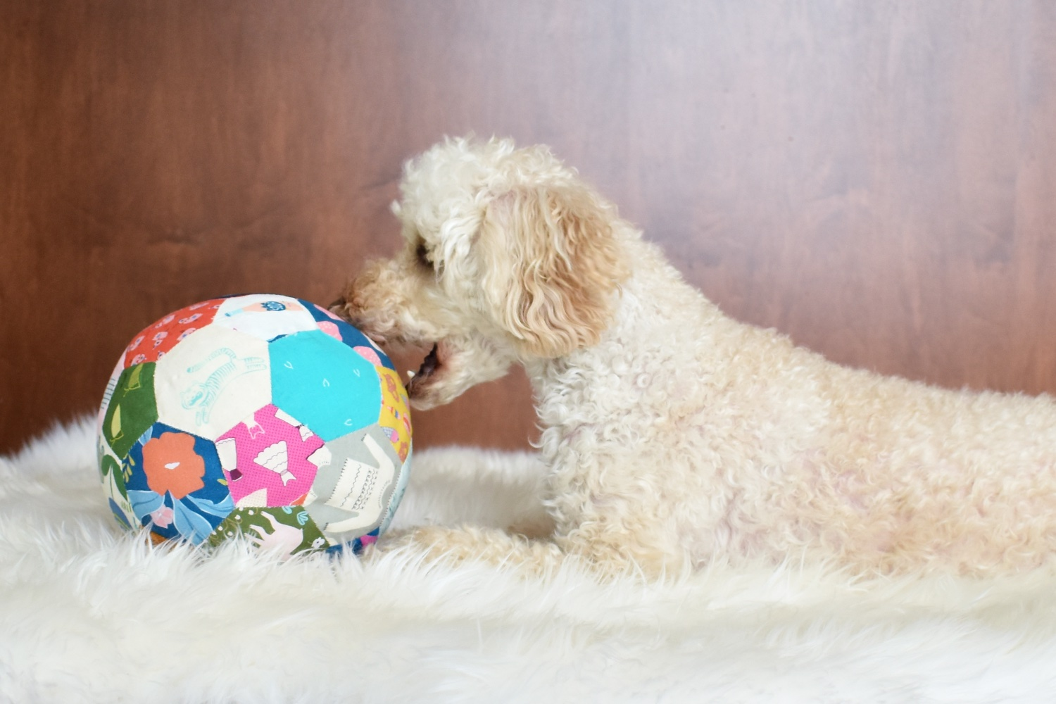 Fabric Ball | Dog & Baby Toy