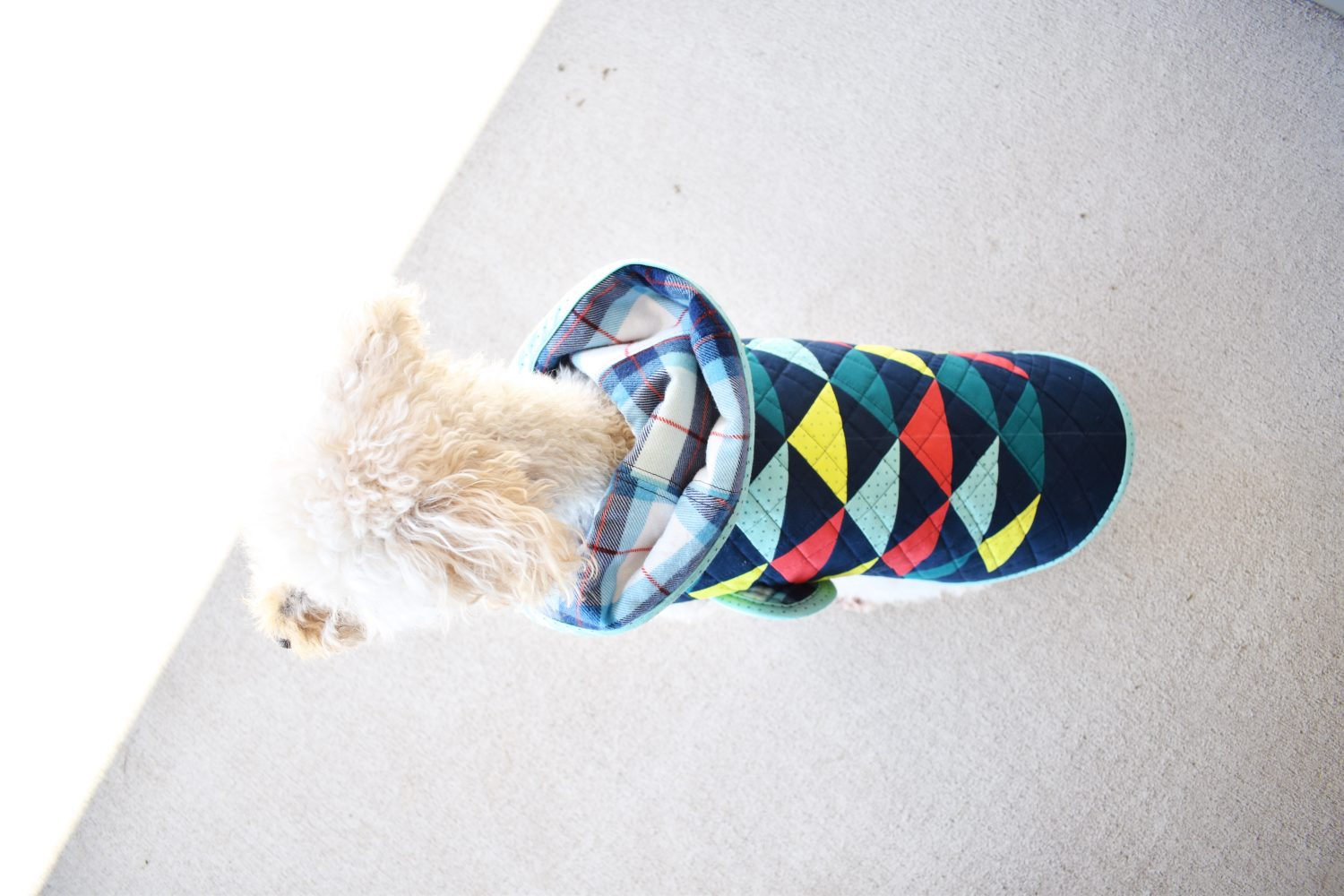 quilt coat for a dog