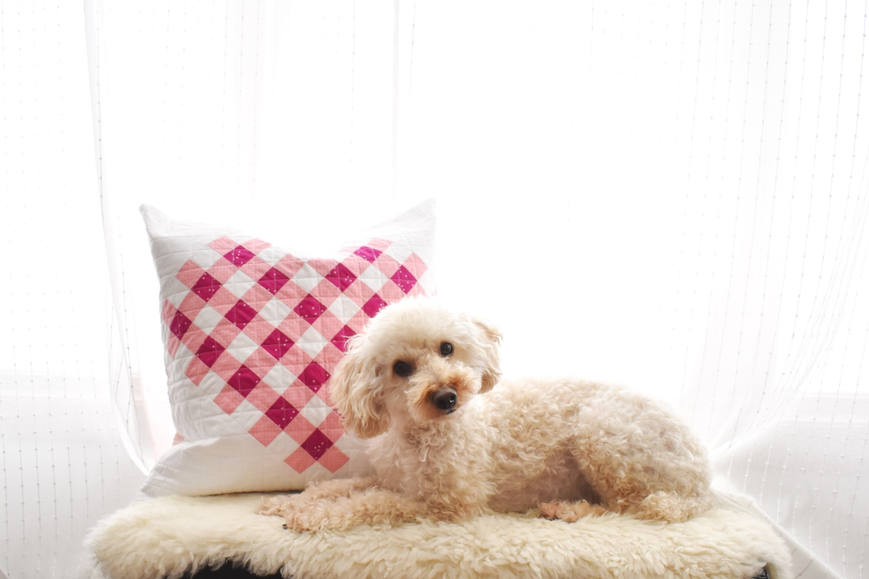 Woven Hearts Pillow
