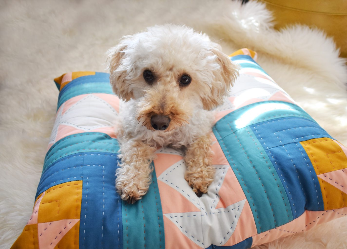 A quilted dog bed is the perfect mix of chic and cozy
